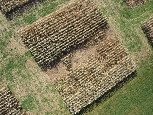 Aerial imagery is comparable to more traditional aerial photographs.